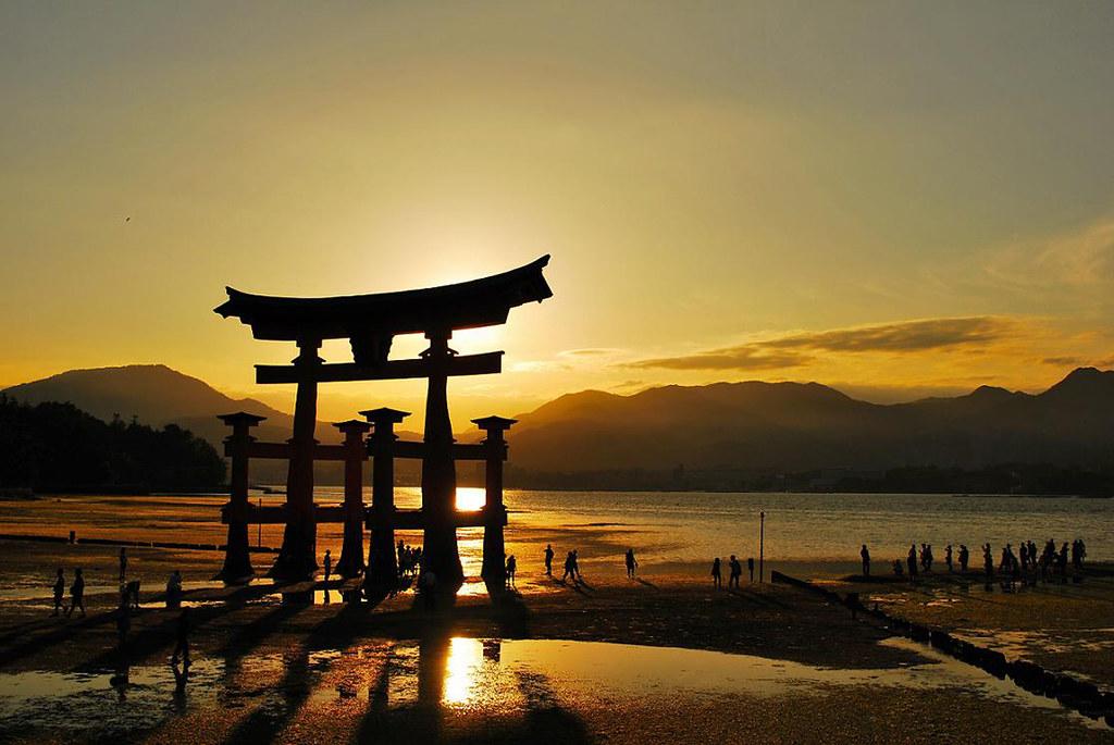 Torii gate of shrine