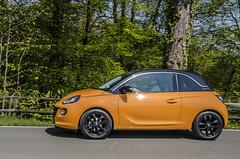 _DSC5098 (birgitgotthardt) Tags: auto orange adam opel madarine