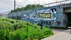 Cane Morto & Nawas / R4 - 26 mei 2016 (Ferdinand 'Ferre' Feys) Tags: streetart graffiti belgium belgique belgi urbanart graff ghent gent gand graffitiart nawas artdelarue urbanarte canemorto
