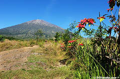 Mount Rinjani (2121studio) Tags: park travel blue trees sky sun mountain color texture nature water beauty weather fog clouds forest woodland way indonesia landscape outdoors volcano high colorful asia moody view cloudy hill wide foggy scenic stormy nobody scene rainy silence land environment smoky southeast idyllic lombok tranquil cloudscape mists rinjani gunungrinjani mountrinjani