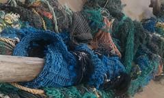 IMAG0184 (xenira) Tags: travel sculpture nature hawaii turquoise debris driftwood kauai fishingnet