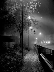 ... i colori illusi dalla notte... (UBU ♛) Tags: blancoynegro blackwhite image noiretblanc kodak blues dreams nebbia bianconero blunotte stealingshadows blupolvere ©ubu blutristezza unamusicaintesta landscapeinblues bluubu luciombreepiccolicristalli
