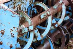 Spirals (Doris Burfind) Tags: mcleans
