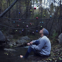 Ornamentation. (David Talley) Tags: christmas cold creek forest river sweater woods ornaments beanie