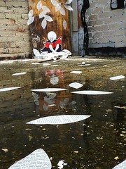 leaf storm (*Barek*) Tags: streetart pasteup leaves paper puddle graffiti book robe brisbane derelict barek
