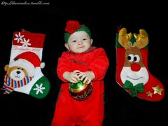First Christmas Pictures (Danica Photography) Tags: christmas flowers girls red baby flower girl photography twins infant babies babygirl fraternal infants redflower fraternaltwins babygirls beaniehat twingirls infantphotography christmasphotography danicadior fraternaltwingirls