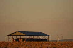 Hay Shed and Wind Towers (blachswan) Tags: sunset australia victoria hay bales bopeep windfarm windtowers hayshed waubrawindfarm