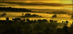 anduramba shadows (southern_skies) Tags: morning sunlight fog hills tress anduramba