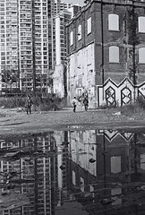 Reflection (Woods | Damien) Tags: china urban blackandwhite reflection building abandoned film water puddle grafitti shanghai noiretblanc tag hiver rangefinder push   kodaktmax400 argentique m50 olympus35sp  moganshanroad shanghaiflickrmeetup