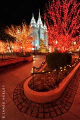 (James Neeley) Tags: utah christmaslights saltlakecity templesquare mormontemple ldstemple lowlightphotography jamesneeley flickr24