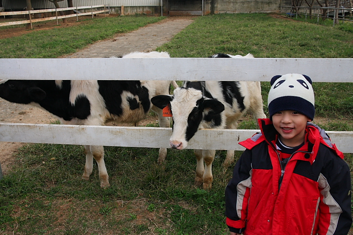 四方鮮乳牧場005