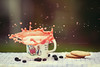 afternoon tea (In Memory Lane~) Tags: rabbit cookie dof tea bokeh mark peter ii 5d splash 135mm 135l
