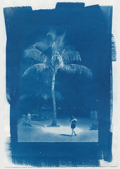 I would like sleeping in blue. (teddy.harvest) Tags: film print nikon d76 hp5 cyanotype altprocess