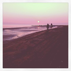 °till the end (alessandro bonetto) Tags: sunset horses beach tramonto cavalli spiaggia iphone instagram iphone4s