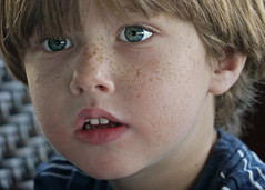 Freckles (where angels have kissed him) (macromary) Tags: boy portrait cute eyes toddler child sweet innocent freckles delraybeach primelens
