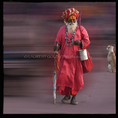 Being the Noise (designldg) Tags: red people dog india man mystery square colours faith religion culture atmosphere soul devotion varanasi turban spiritual shiva hindu dharma hinduism kashi ganga sadhu ganges ghats benares benaras uttarpradesh  indiasong
