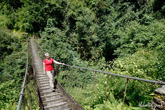 (Michał Olszewski) Tags: bridge nepal forest asia footbridge land suspensionbridge himalayas acap civilengineering tropicalforest gandaki kaski annapurnaconservationarea geographicalfeatures annapurnaconservationareaproject landstructures