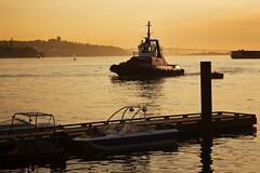 HAWK (Jasmic) Tags: city trip bridge sunset summer holiday canada water vancouver boat bc britishcolumbia jetty tug