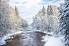 Pitkäkoski conservation area, Helsinki (Paarma) Tags: winter snow ice water forest helsinki wideangle bluesky rapid slowshutterspeed 366 366project ginordicjan12 ginordicfeb12