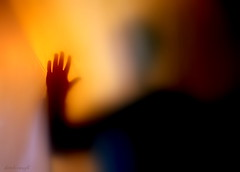 Låt den rätte komma in (derek raugh) Tags: shadow orange black silhouette warm hand screen lettherightonein