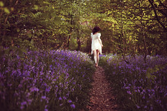 Scarlet's Walk ... (Confused-Hair) Tags: trees wild woman forest free run lilac mystical scarletswalk confusedhair