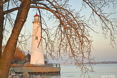 February's View on the River (Annette LeDuff) Tags: light sunset shadow urban lighthouse tree water river harbor pattern branches belleisle urbanpark flickraddicts detroitmi michiganstatepark thegalaxy detroitharbor worldwidetravelogue williamgmillikenstateparkandharbor photoannetteleduff annetteleduff thefouroutlaws treestreetopsandsky 02052012 twozweideuxduedva2