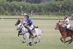 polo (rdlt) Tags: horses sports sport caballos photography play photos action best deporte match players polo equine mallets jugadores