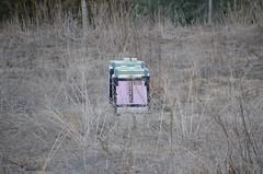 DSC_0157 (rlg) Tags: february monday 06 2012 0206 beehives fpr 201202 20120206 nikond5100 02062012