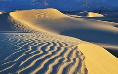 Mesquite Dunes (photo61guy) Tags: california nature landscape morninglight sand bravo desert deathvalley soe sanddunes deathvalleynationalpark mesquitedunes platinumheartaward bestcapturesaoi mygearandme allnaturesparadise