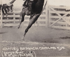 US RPPC 1923 RPPC COWBOY SMOKY BRANCH RIDING ONEGLASEYE Cowboys Cowgirls & Rodeo BRONCO BUSTIN Professional Western Riding & Family FUN Rodeo Photographer RR DOUBLEDAY4 (UpNorth Memories - Donald (Don) Harrison) Tags: travel usa heritage history tourism vintage antique michigan postcard memories restaurants hotels trailer roadside upnorth cafes attractions motels cottages cabins campgrounds upnorthmemories rppc wonders michigan memories parks entertainment natural harrison roadside travel don tourist puremichigan stops upnorth