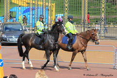 Mounted police in London (NolCO81) Tags: londres palais angleterre buckingham reine garde chevaux relve