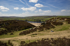 Lower Laithe Reservoir with Sproodle (jackharrybill) Tags: westyorkshire haworth penistonehill