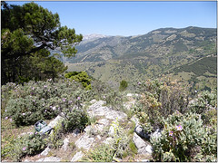 View From The Top (Mabacam) Tags: mountain mountains walking landscape outdoors countryside spain view hiking country andalucia trail moorish summit vista 2016 cerroverde canillasdealbaida parquenaturalsierrasdetejeda lafabricalaluz