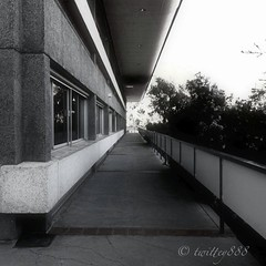 Good Afternoon my IGers! Hope you... (jen_journal) Tags: b monochrome architecture jj ramp structure teg photooftheday iphone4 ignation iphoneography iphonesia jjforum igdaily uploaded:by=flickstagram twittey888 instagram:photo=1787469911047475