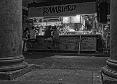 "Ramblero • <a style=""font-size:0.8em;"" href=""http://www.flickr.com/photos/45090765@N05/27191119306/"" target=""_blank"">View on Flickr</a>"
