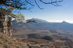 Kara-Dag (Eyken :)) Tags: road autumn sea sky mountains tree ukraine vineyards fields crimea koktebel autumn2011