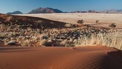 Dunes of Sesriem-Sossusvlei NP | 13