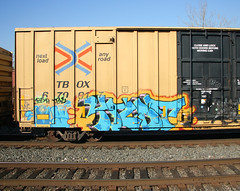 Ynot (carnagenyc) Tags: train graffiti rip freight ynot ynotse