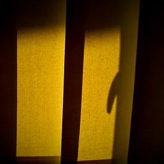 |||¶| (zecaruso) Tags: sunlight window office shadows sonyericsson curtain ombre explore finestra smartphone ufficio velo luce tenda ze zeca zecaruso cicciocaruso authorsplaza zequadro authorsclub ze² xperiax10mini conservatoriadipalermo