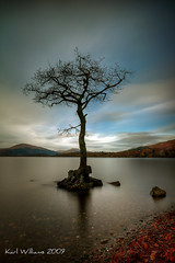 Milarrochy Tree (1) (Shuggie!!) Tags: longexposure tree water landscape scotland williams karl trossachs hdr lochlomond naturepoetry karlwilliams