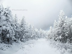 The White Path - Explore - (MDumas2011) Tags: saint mont magloire 917m
