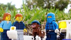 Day 347 (chrisofpie) Tags: chris pie monkey lego doug legos hero heroes minifig roger minifigure bluehat legohero chrisofpie rogeranddoug 365legos dougthechimp