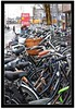 Bicycle, bicycle... (scrapping61) Tags: utrecht expression thenetherlands bikes transit tqm witness tistheseason swp artisticphotos 2011 firstquality forgottentreasures anawesomeshot theperfectphotographer scrapping61 visionquality qualitysurroundings daarklands trolledproud exoticimage heavensshots pinnaclephotography freeadmin coverpainters