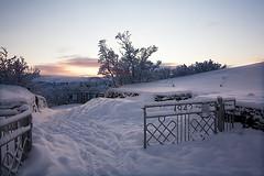 Dimmuborgir (Petur Bjarni) Tags: snow iceland gate myvatn sland snjr mvatn dimmuborgir hrm hli rememberthatmomentlevel1