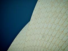 Opera House, Sydney (Arnaldo Pellini) Tags: house opera sydney operahouse