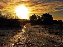 sunrise at Urania. (gos1959) Tags: sunrise aalborg urania mygearandme mygearandmepremium mygearandmebronze mygearandmesilver mygearandmegold bbng