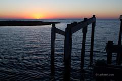 Sunset in Salvo