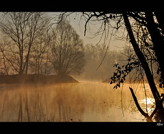 Golden morning (alfvet) Tags: river nikon alba fiume ngc npc sole d60 thegalaxy parcodelticino veterinarifotografi bestcapturesaoi elitegalleryaoi mygearandme mygearandmepremium mygearandmebronze mygearandmesilver mygearandmegold mygearandmeplatinum mygearandmediamond ringexcellence dblringexcellence tplringexcellence flickrstruereflection1 flickrstruereflection2 flickrstruereflection3 flickrstruereflection4 flickrstruereflection5 flickrstruereflection6 flickrstruereflection7 eltringexcellence flickrstruereflectionexcellence rememberthatmomentlevel1