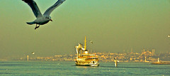 Wings Over İstanbul
