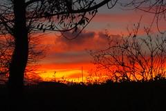 Hier soir... (Grard Farenc (slowly back) !) Tags: trees sunset sky sun clouds evening ciel arbres nuages soir